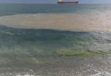 """""""Невероятна реклама"""" за """"Морската столица"""": Варненци се къпят в лайна!"""