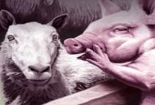 """Из """"Фермата на животните"""" на Джордж Оруел"""