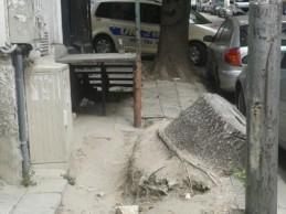 Улица в центъра на Варна е непроходима за пешеходци!