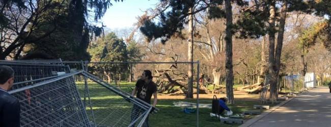 ОбщинаВарна е дала разрешение площта около Кривото дърво в Морската да бъде заградена