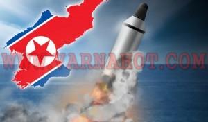 3191-Nordkorea RAkete neu