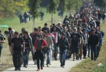 Чехия отказа да се подчини на Европейския съюз. Страната категорично отказа да приема бежанци