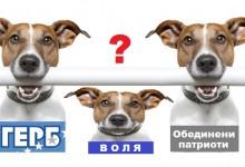 Ще разклати ли референдума на Слави коалицията ГЕРБ – Обединени патриоти и ще има ли Воля най-накрая