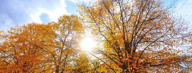 Времето днес: Слънчево и топло, с температури до 30 градуса