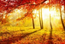 Времето днес – слънце и летни температури