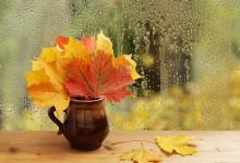 Тази вечер настъпва астрономическата есен