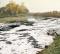 ЕК стартира наказателна процедура срещу България за неизпълнение на директива относно пречистването на градските отпадъчни води
