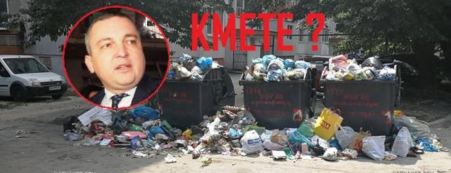 Видимите резултати: В разгара на летния сезон и тази година Варна отново потъна в боклуци!