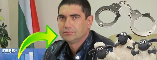 След обществения натиск повдигнаха обвинения и арестуваха местния герберски активист Лазар Влайков