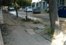 Варна на първо място в България по мръсен въздух! Причината:Мръсните улици!