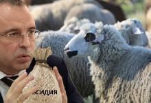 Земеделският министър лобира скандално за едрите фермери за сметка на малките и средни стопанства