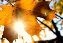 Времето днес: Предимно слънчево с температури достигащи до 24 градуса