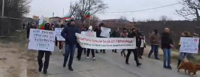 Варненци излязоха днес на пореден протест срещу изсичането на гората край Варна