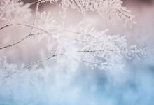 В началото на седмицата очакваме първите снеговалежи