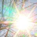 991-ratio-slynchevo-i-toplo-vreme-za-sezona-v-starozagorsko