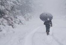 Зимата пак ни изненада! Над 180 населени места в страната останаха без ток, затворени пътища и проходи