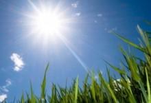 Времето днес: Опасно горещо, температури до 43 градуса!