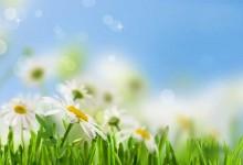 Времето днес: Предимно топло и слънчево